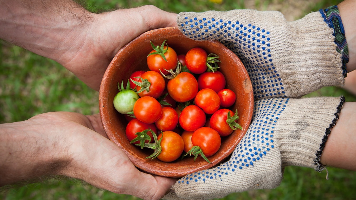 Udruge u poljoprivredi